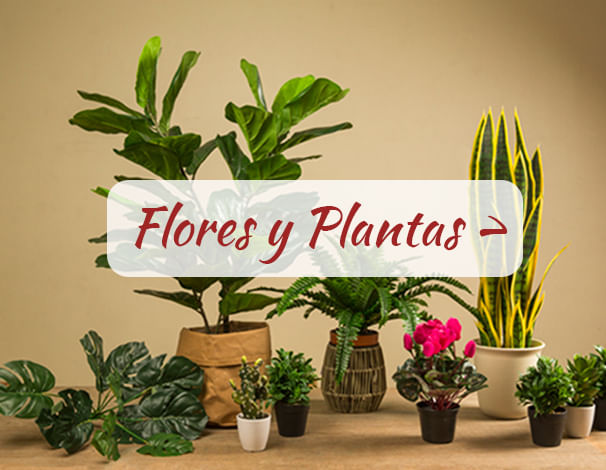 Flora center for Casas decoradas con plantas naturales