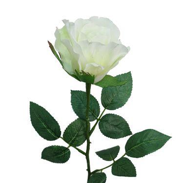 ROSA_ANGIE_62cm_BLANCO_1